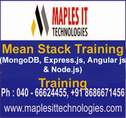 Mean Stack Training Ameerpet, Hyderabad.