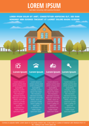 High quality Infographic design