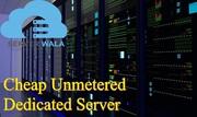 Choosing the Cheap Unmetered Dedicated Server