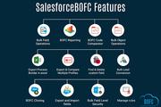 Bulk Object Operations Salesforce
