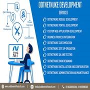 DotNetNuke Development Company India | DNN Website Services