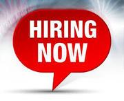 We are hiring a Fullstack Java Developer.